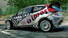 Kosciuszko Ford WRC