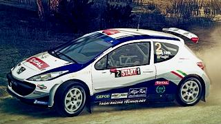 TOTAL Peugeot 207 skin for DiRT 3